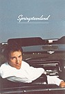 springsteenland